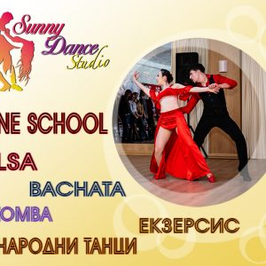 Online School by Sunny Dance Studio